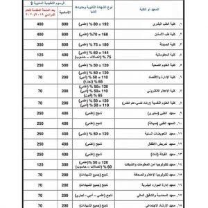 دليل المفاضلة للجامعة الدولية للعلوم والنهضة للعام 2019-2020